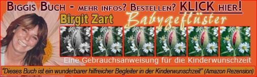 Das neue Buch von Birgit Zart zur Kinderwunschhilfe
